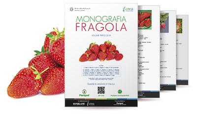 Monografia Fragola 2015