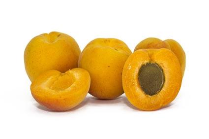 Calendario Maturazione Albicocche.Albicocco Piante Frutticole Plantgest