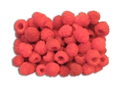 Lampone rosso Heritage - Plantgest.com