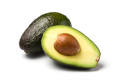 Avocado - Plantgest.com